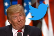 Betting on Trump on Twitter